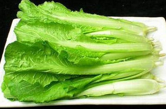 果蔬百科小白菜的营养价值
